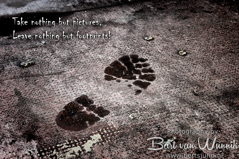 Take nothing but pictures, leave nothing but footprints
